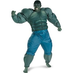 The Incredible Hulk 2008 Movie Inflatable Adult Costume
