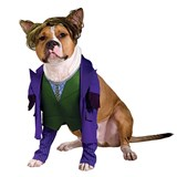 Batman Dark Knight The Joker Pet Costume