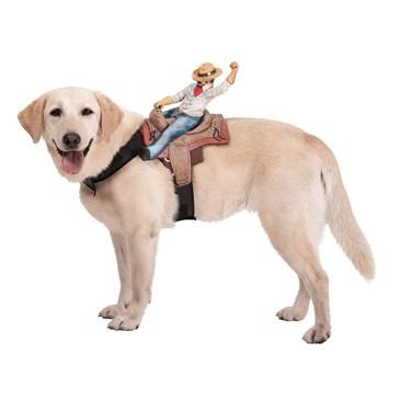 Dog Riders Cowboy Costume