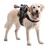 Dog Riders Headless Horseman Pet Costume