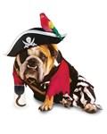 Zelda - Pirate Pet Costume