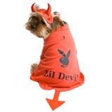Playboy Lil Devil Pet Costume