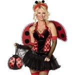 Lovely Ladybug Adult Costume