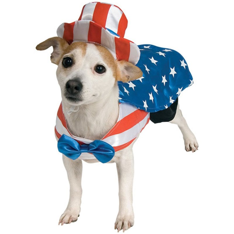 Uncle Sam Dog Costume for the 2015 Costume season.