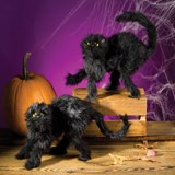 Scary Black Cat (1 count)