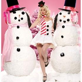 Miss Winter Wonderland Adult Costume