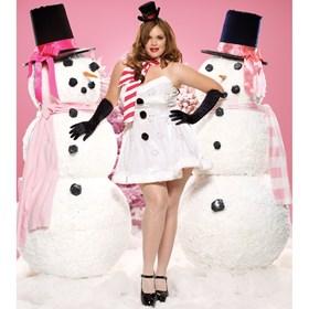 Miss Winter Wonderland Adult Plus Costume