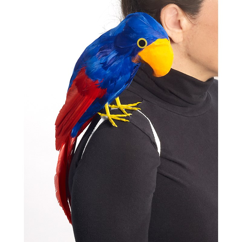 Parrot, Pirate for the 2015 Costume season.
