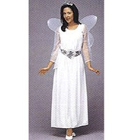 Angel Gown-Adult Small