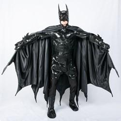Collectors Batman Adult Costume