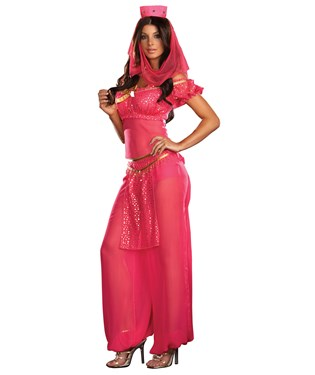 Genie May K. Wish Adult Costume