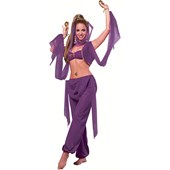 Desert Princess Adult Costume