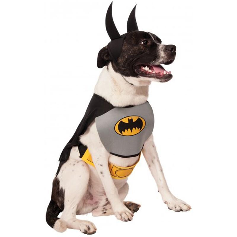 Batman Dog Costume for the 2015 Costume season.