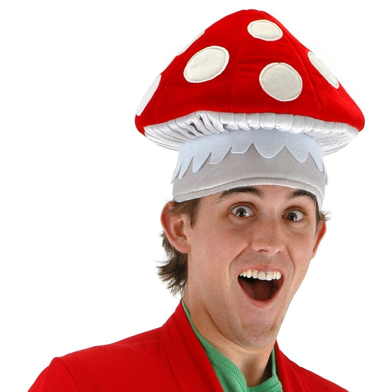 Mushroom Hat for the 2015 Costume season.