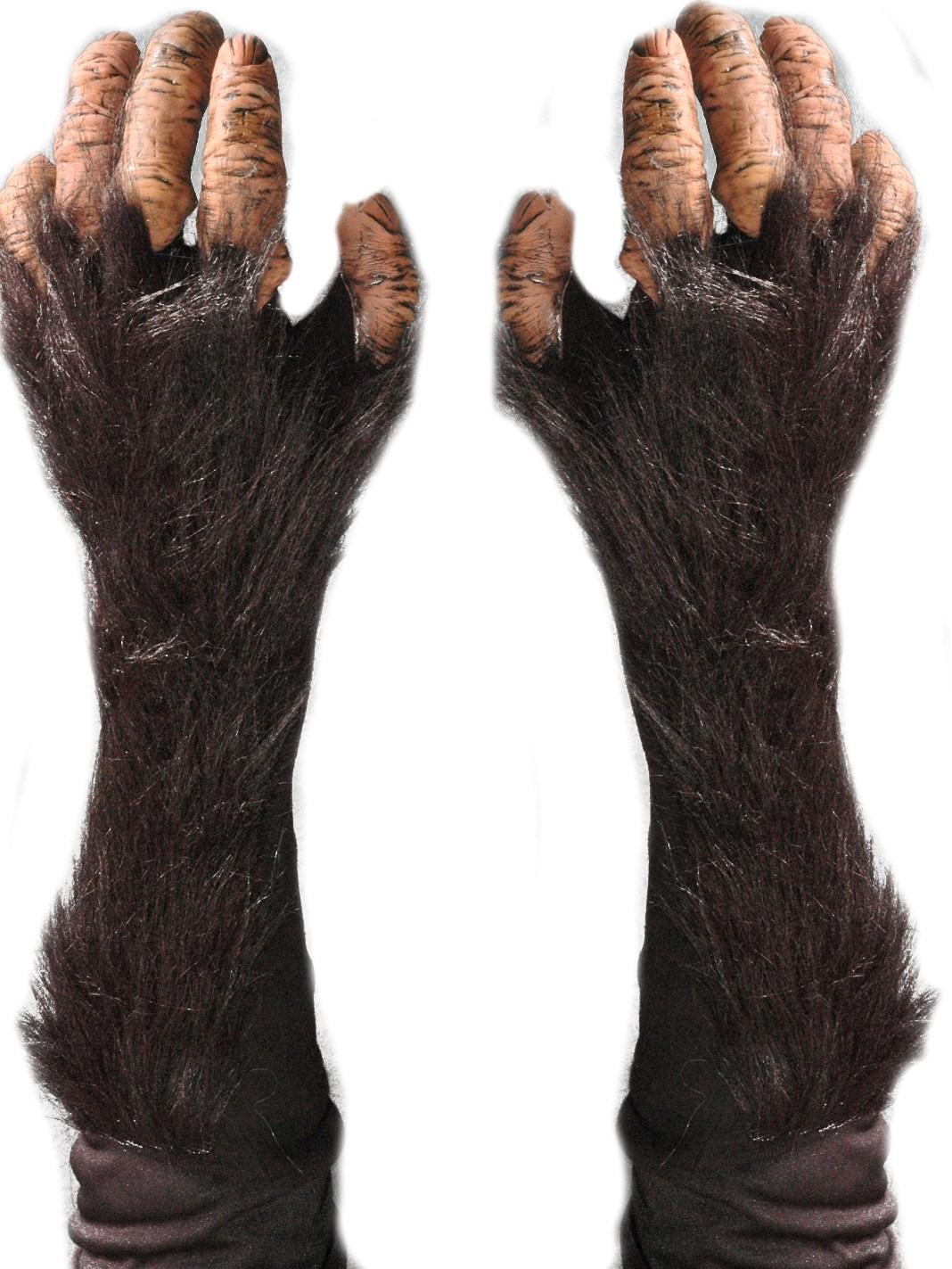 Image of Adult Chimp Gloves