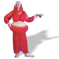 Harem Scarem Adult Costume