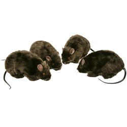 6 Furry Rat (1 count)