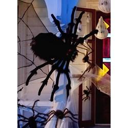 5.5' Black Spider