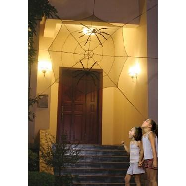 Giant Doorway Spider Web