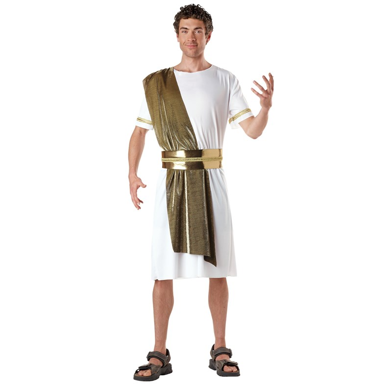 Adult Toga Male Adult Costume- White: Standard One-Size