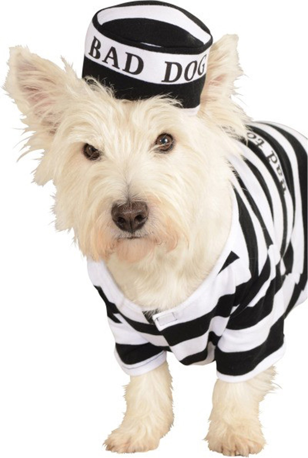 Prisoner Dog Pet Costume