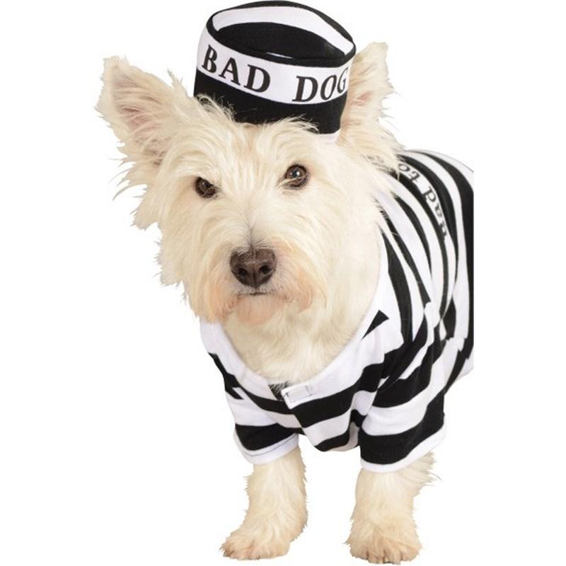 Prisoner Dog Pet Costume for the 2015 Costume season.