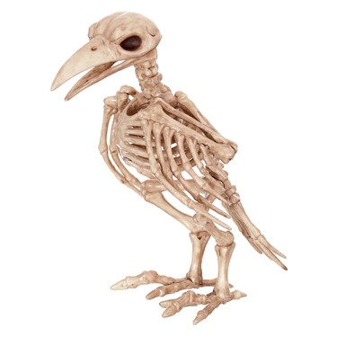 "7"" Skeleton Tweety Bones"