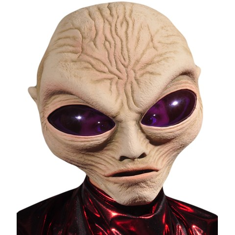 Grey Alien Adult Mask