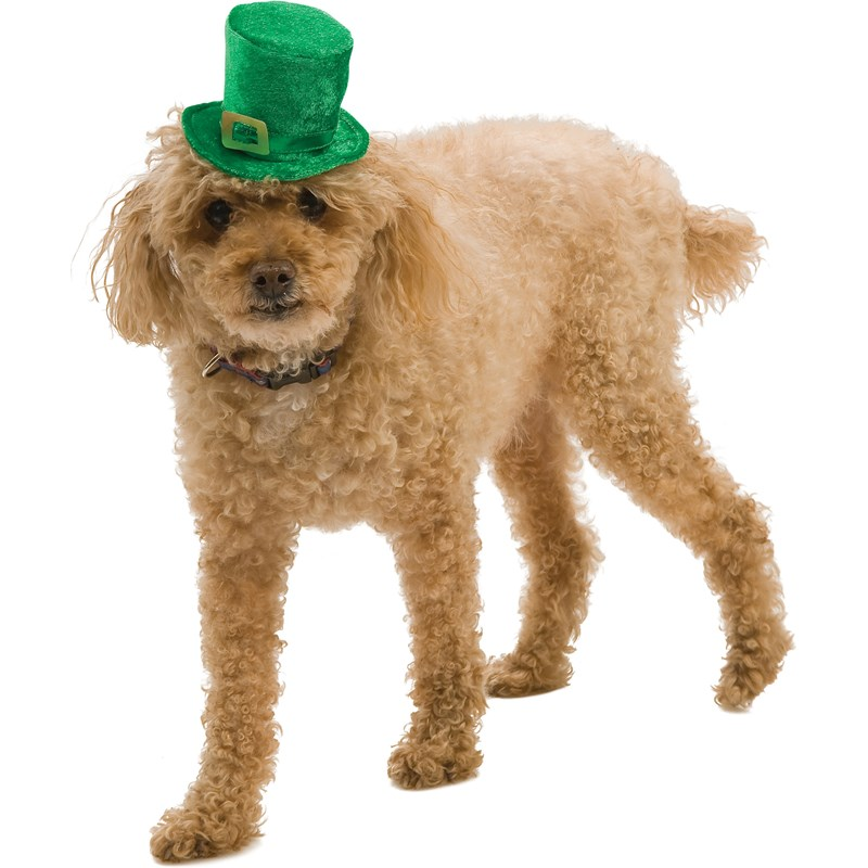 Mini Leprechaun Hat Pet Costume for the 2015 Costume season.