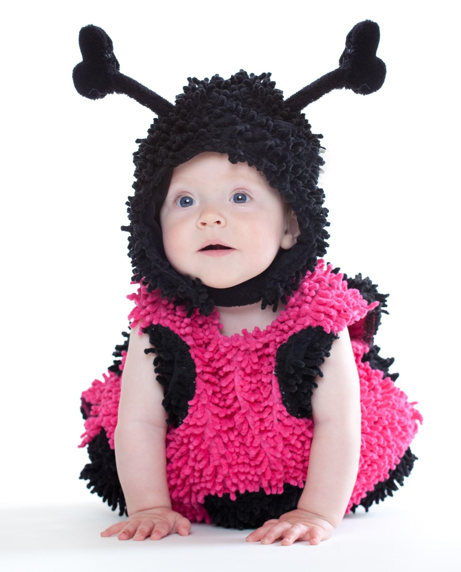 Image of Baby Lady Bug Infant / Toddler Costume