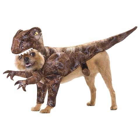 Animal Planet Raptor Pet Costume