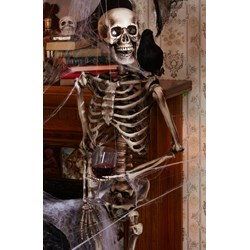 Lifesize Posable Skeleton