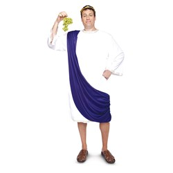 Roman God Adult Plus Costume
