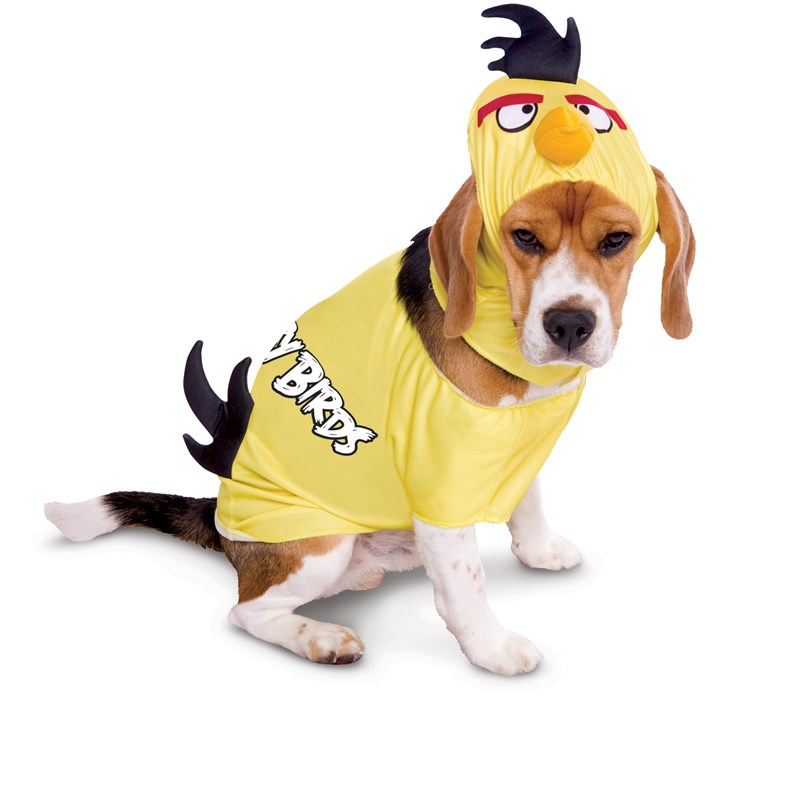 Rovio Angry Birds Yellow Bird Pet Costume for the 2015 Costume season.