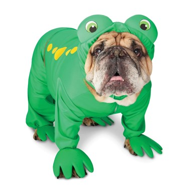 Zelda Frog Prince Pet Costume