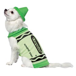 Crayola Green Crayon Pet Costume