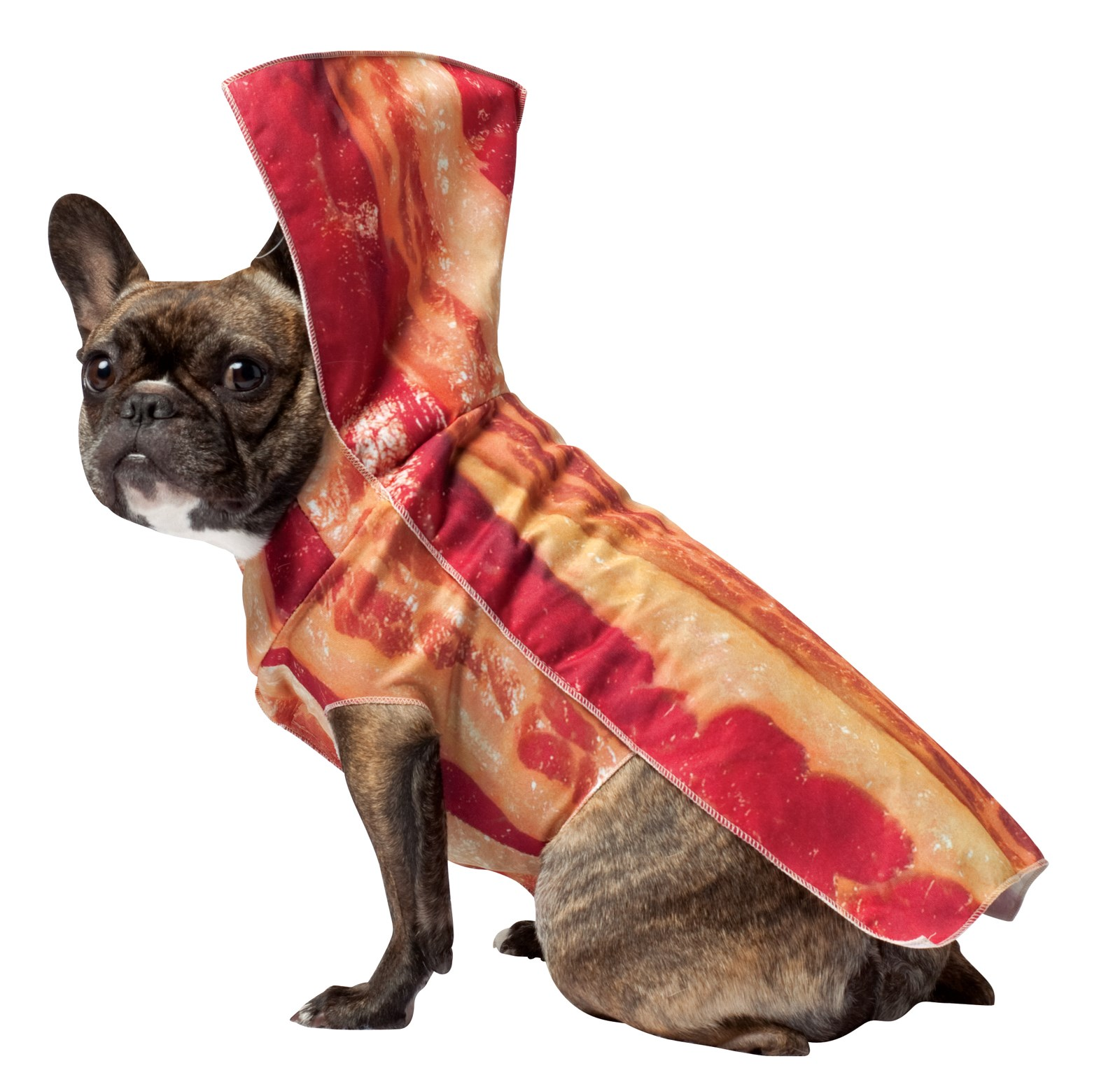 Bacon Pet Costume