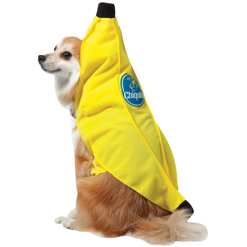 Chiquita Banana Pet Costume for the 2015 Costume season.