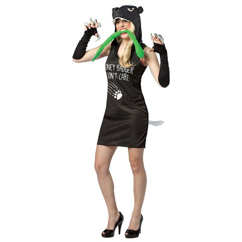 Honey Badger Dress Adult Costume