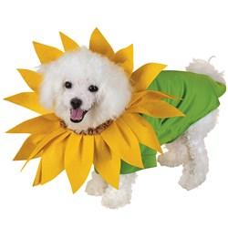 Sunflower Pet Costume