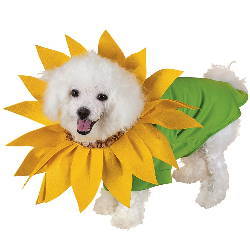 Sunflower Pet Costume for the 2015 Costume season.