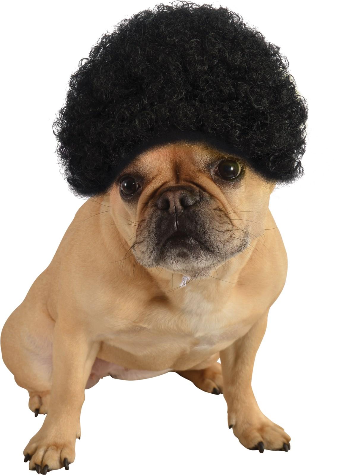 Pet Black Afro Wig