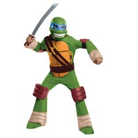 teenage mutant ninja turtle leonardo kids photo