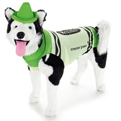 Crayola Green Crayon Pet Costume - Clearance Size Small