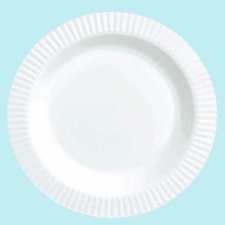 White Premium Plastic Banquet Dinner Plates (16 count)