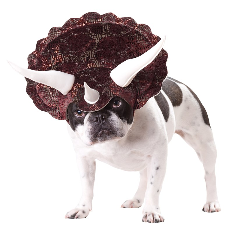 Triceratops Dog Costume for the 2015 Costume season.