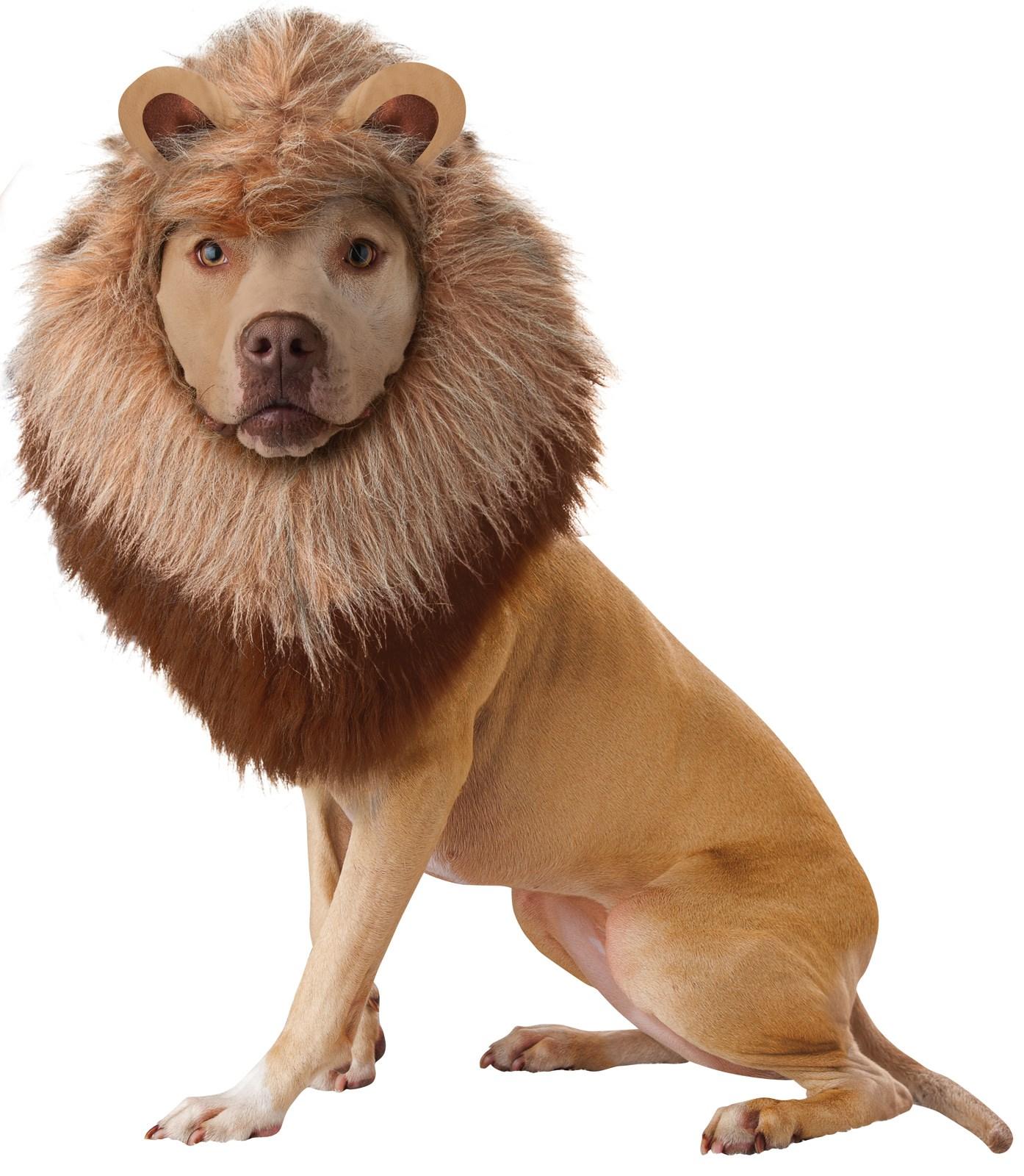 Animal Planet Lion Dog Costume
