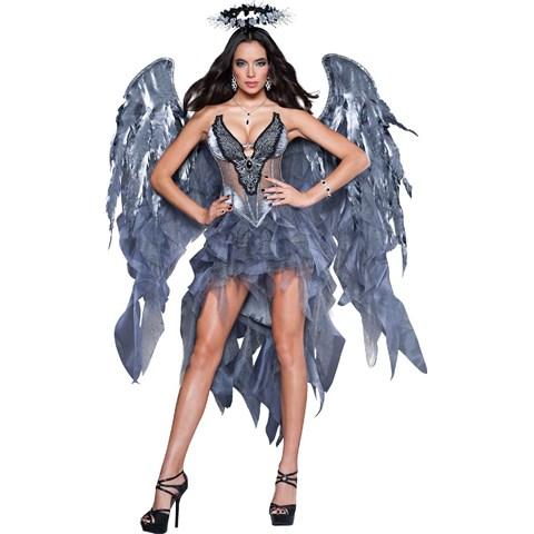 Dark Angel's Desire Womens Dress Costume
