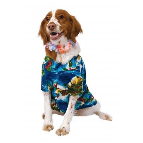 Luau Jacket & Lei Pet Costume