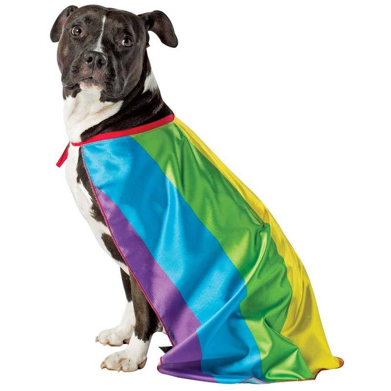 Rainbow Flag Cape Pet Costume for the 2015 Costume season.